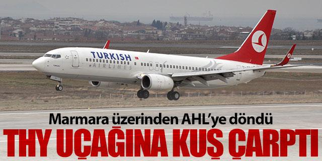Türk Hava Yolları uçağına kuş çarptı