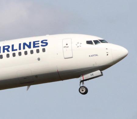 THY uçağı Atatürk Havalimanı'na inerken kuşa çarptı